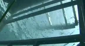 Белая акула пробивает оборону: самые пугающие видео с акулами