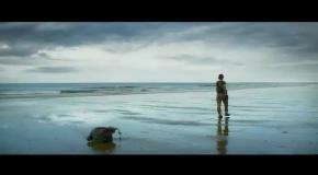 Annihilation (2018) - Teaser Trailer