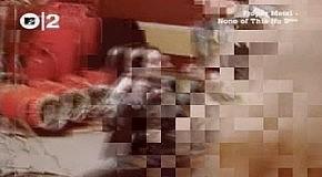 Cradle Of Filth - Babylon A.D.
