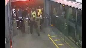 Полицейский сдерживает стаю фанатов