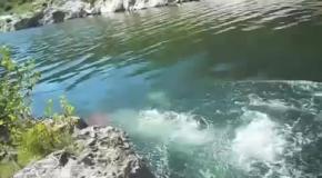 Как поймать рыбу без удочки