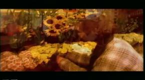 DJ Bobo - Love Is All Around