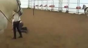 Подлез к коню сзади