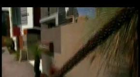 Лучшие экологические дома мира. 27из39. Калифорния, пригород Сан-Франциско. Австралия. США, Техас.