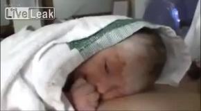 Суворый малыш