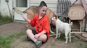 Любое желание для умирающего пса