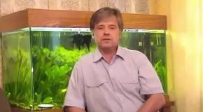 Славянская ПсихоФизическая система 'БелоЯр' урок№1(Все бесплатно)