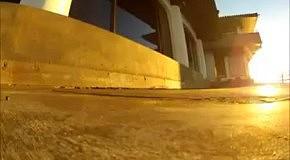 Чайка сняла на камеру закат в Сан-Франциско