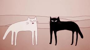 Почему коты ведут себя так странно