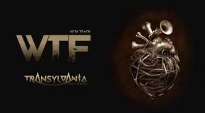 Transylvania Damn Fun - WTF