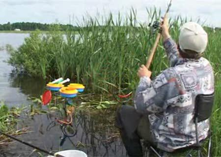 рыбалка ловля толстолобика снасти прикормка