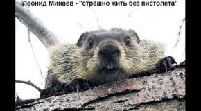 Леонид Минаев - страшно жить без пистолета