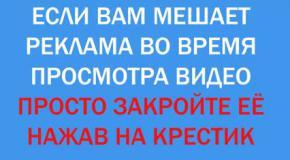 Украина Новости 2014!Европейские политики приехали в Донбасс наблюдать за ходом выборов!