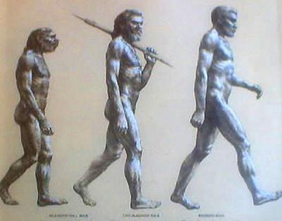 Человек произошел далеко не от обезьяны