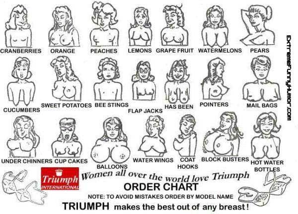Названия форм женской груди картинка
