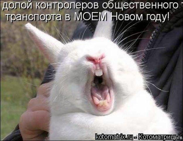 http://bm.img.com.ua/img/prikol/images/large/2/3/173332_348039.jpg
