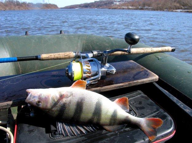 Рыбалка на оке-рыбные места