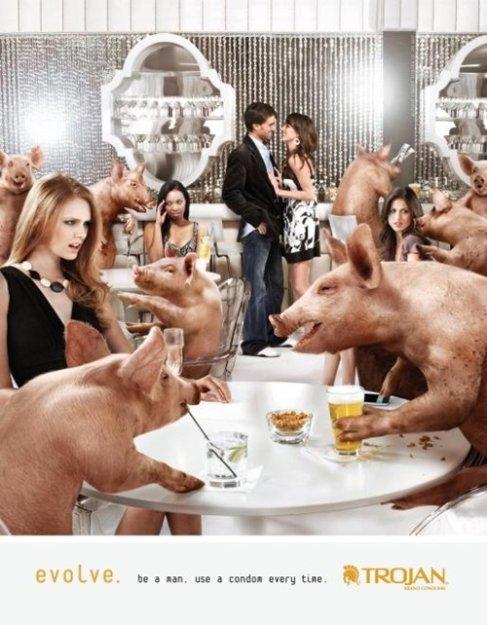 Секс мужчины со свиньей